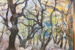 (Ref - 44: JJ10) Belsay Autumn Trees, pastel  on paper, 42 x 32 cms, £255, framed