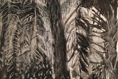(Ref - 41: JJ14) Trailing Foliage I, Charcoal and pastel on paper, 48 x 38 cms, £95, mounted