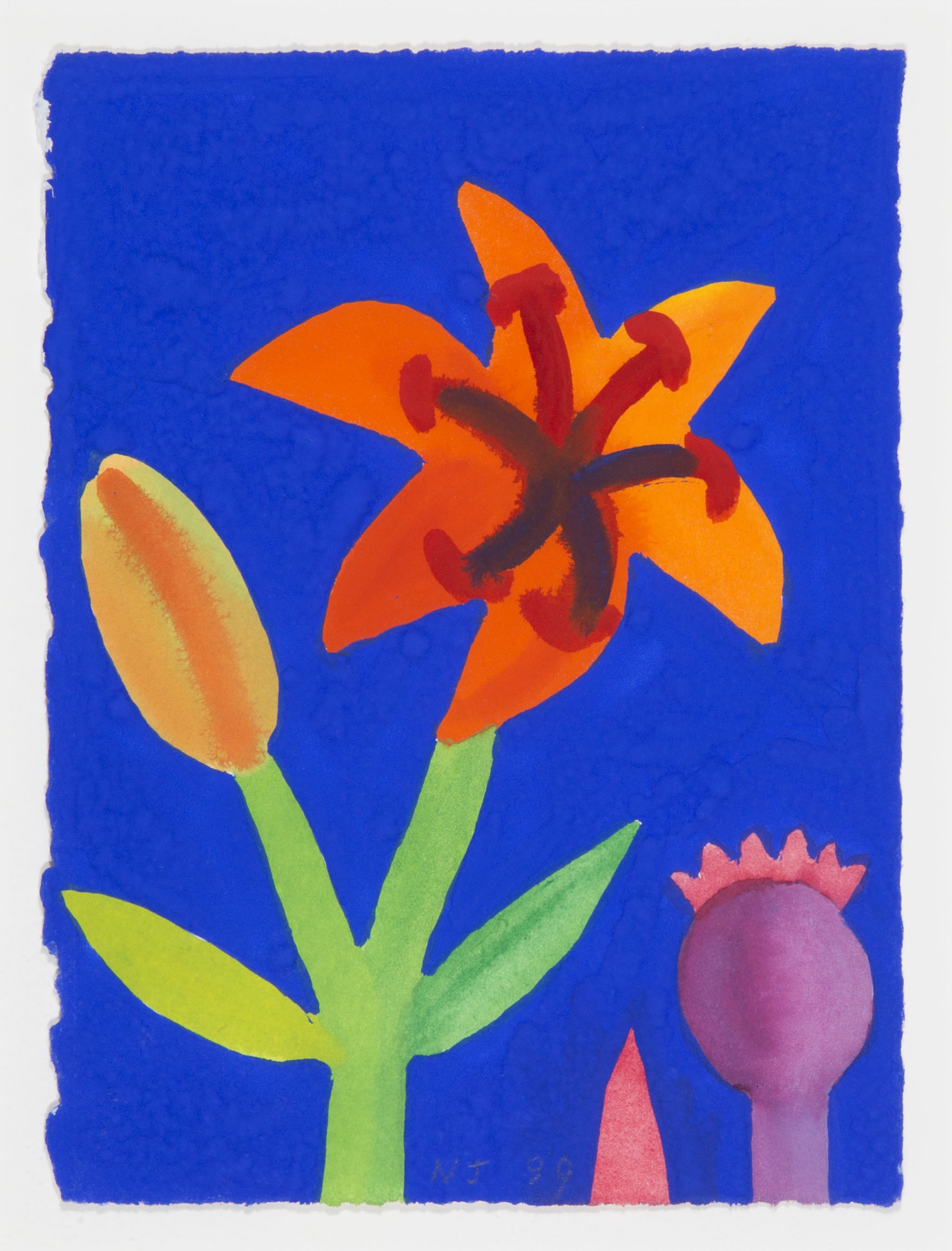 Orange Lily with Poppy Seed Head on Royal Blue [204-99]