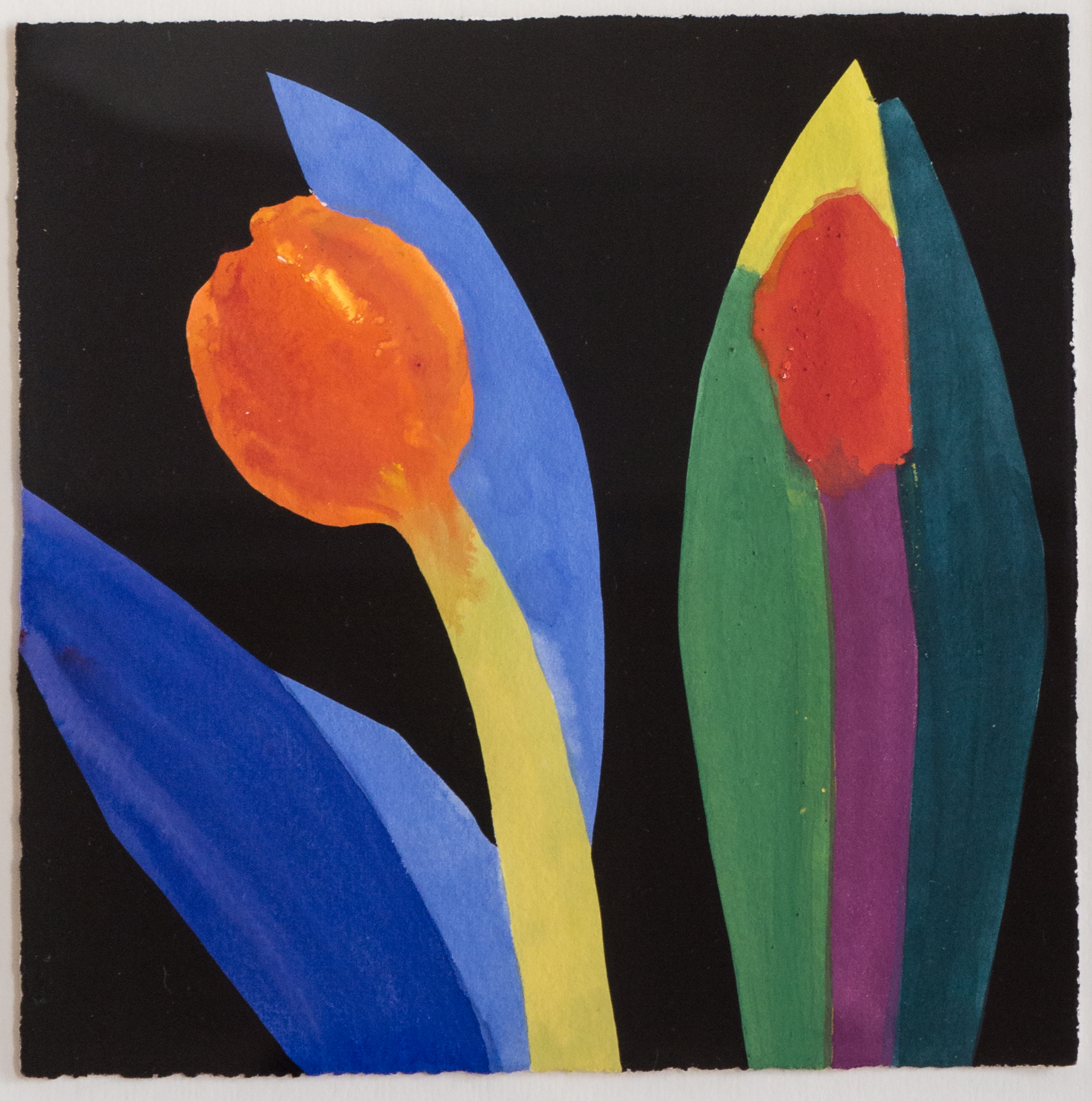Two Red Tulip with  Green to Yellow Leaf    [007-01]
