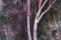 pink-trees-narrow