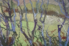 Title: Upland Hedge - Type: Oil, white frame, window mounted, glass - Size: 385x315 including frame - Ref: ART27J/F - Cost: £112 Gallery, £38 Foodbank